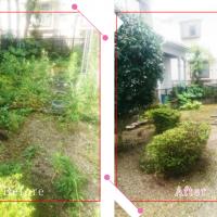 【清掃例】夏の庭 剪定2(大分市のハウスクリーニングM&m)