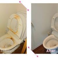 【清掃例】トイレ 便器(大分市のハウスクリーニングM&m)