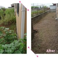 【清掃例】敷地 剪定・草刈り(大分市のハウスクリーニングM&m)