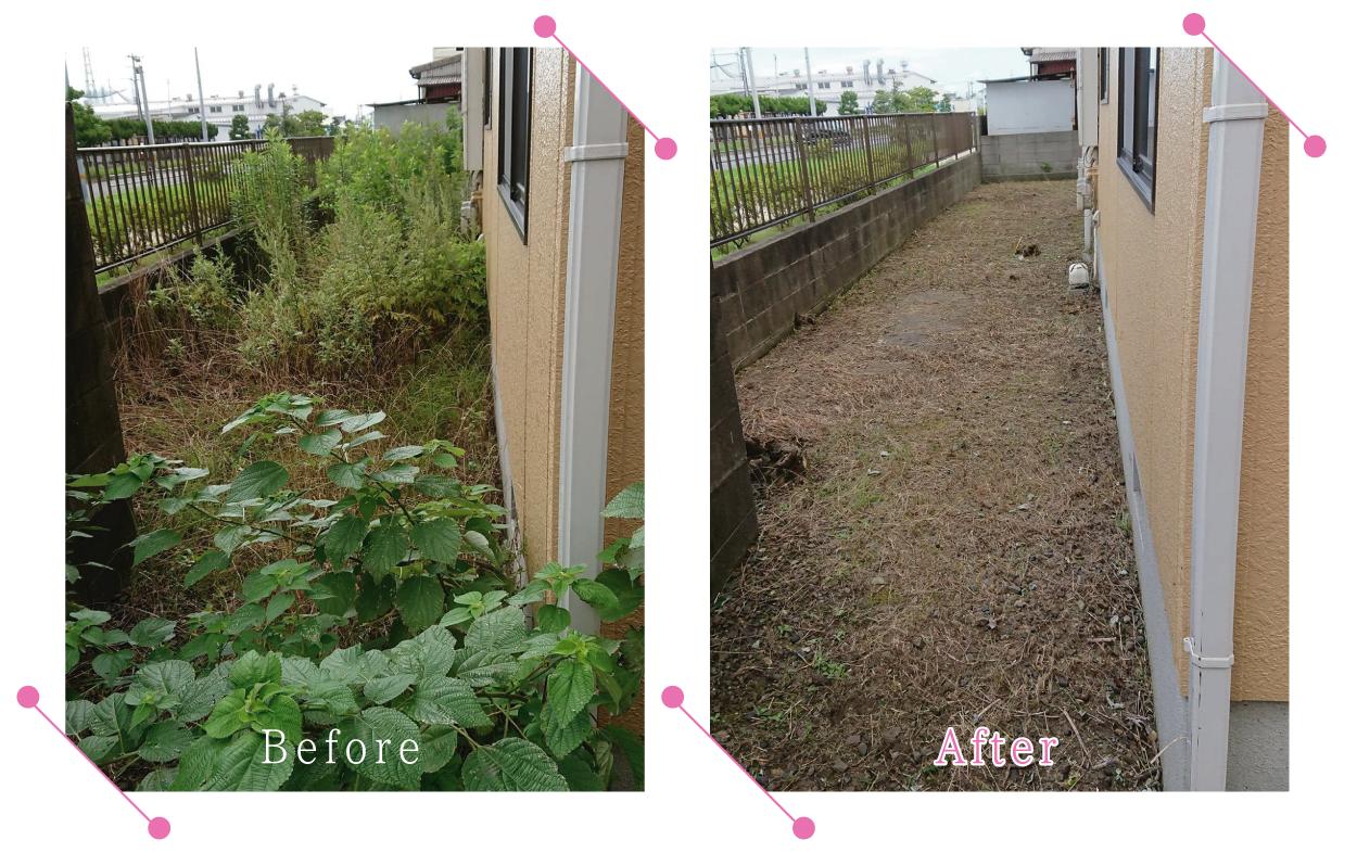 【清掃例】敷地 剪定・草刈り1