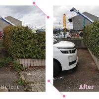 【清掃例】駐車場 剪定・草刈り(大分市のハウスクリーニングM&m)
