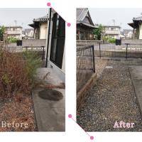 【清掃例】夏の庭 除草・草刈り3(大分市のハウスクリーニングM&m)