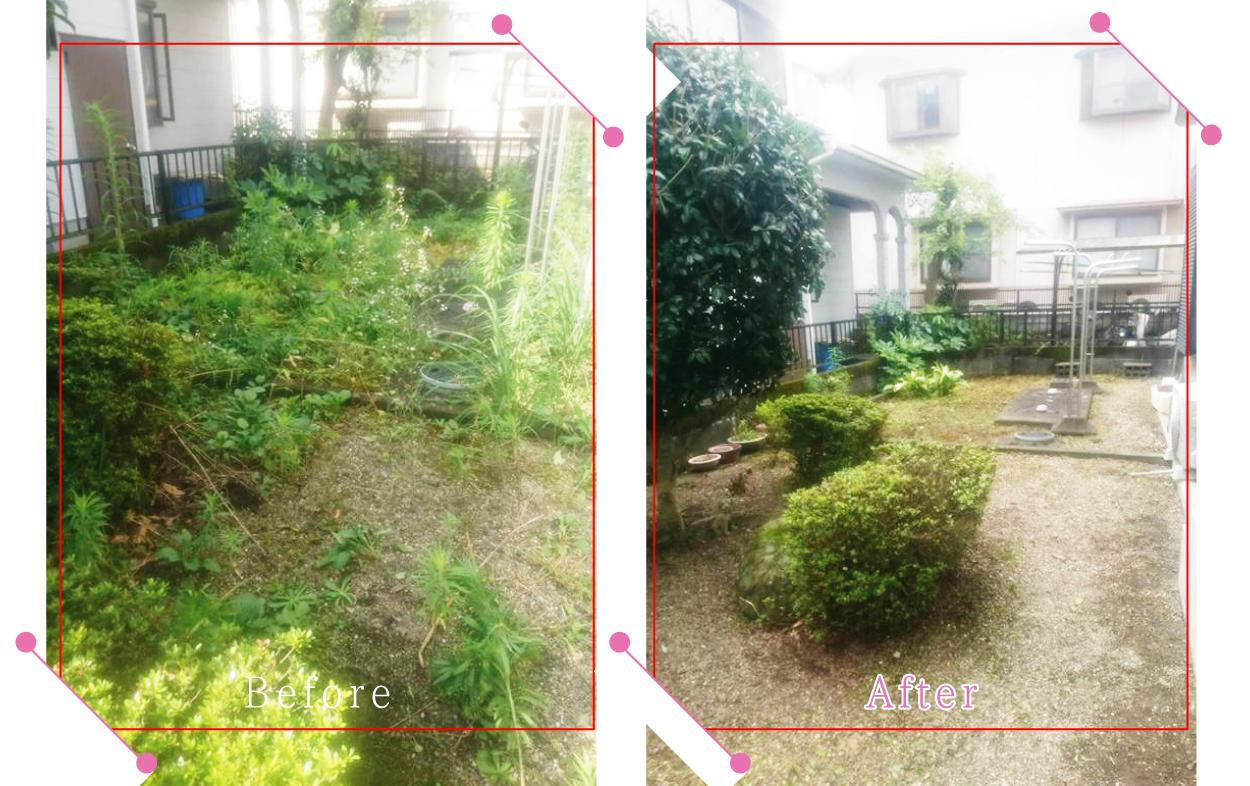 【清掃例】夏の庭 剪定2