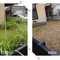 【清掃例】庭 剪定・草刈り(大分市のハウスクリーニングM&m)