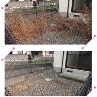【清掃例】夏の庭 除草・草刈り4(大分市のハウスクリーニングM&m)