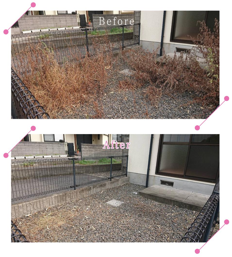 【清掃例】夏の庭 除草・草刈り4