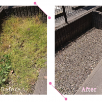 【清掃例】夏の庭 除草・草刈り5(大分市のハウスクリーニングM&m)