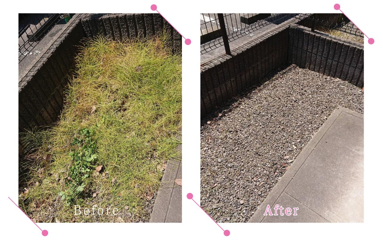 【清掃例】夏の庭 除草・草刈り5