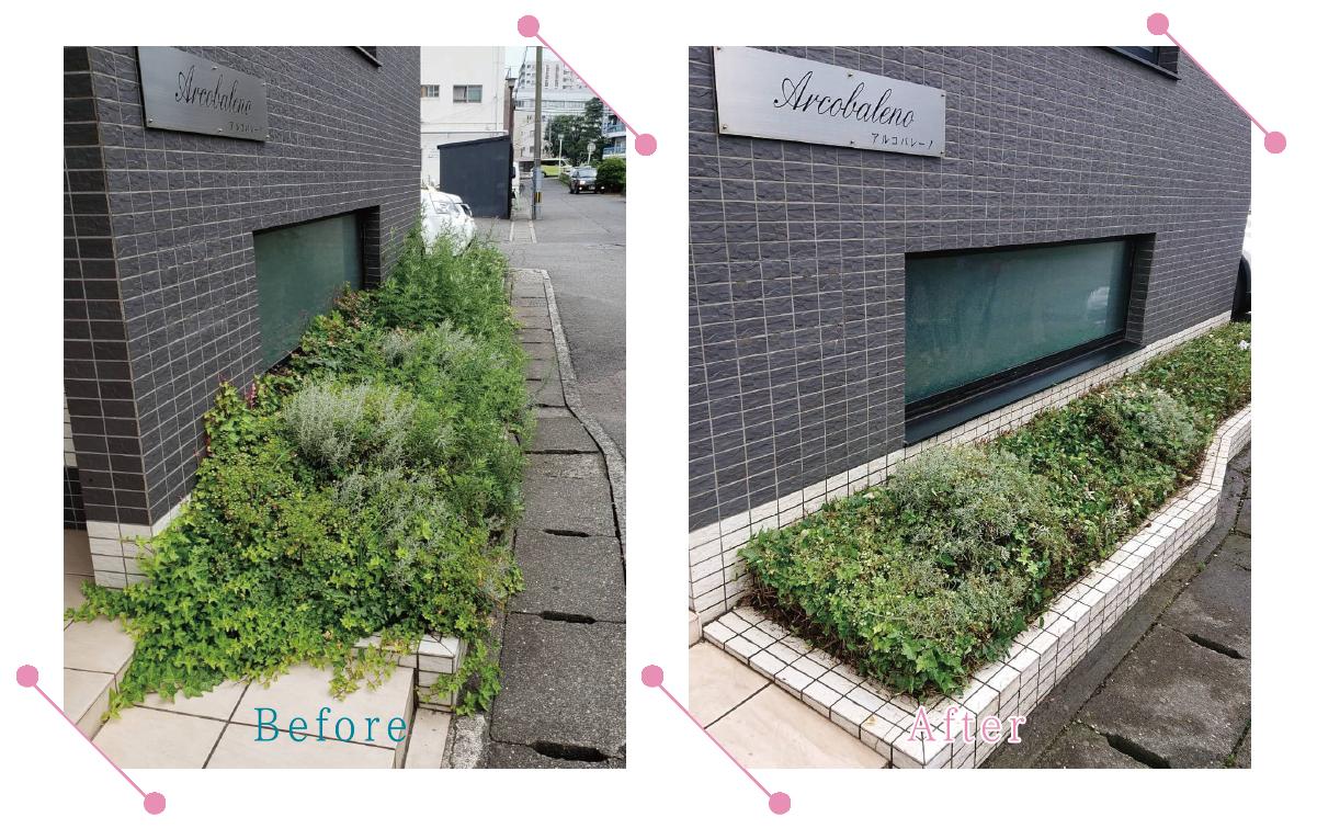 【清掃例】花壇 草刈り