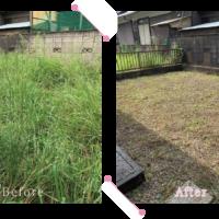 【清掃例】敷地 草刈り1(大分市のハウスクリーニングM&m)