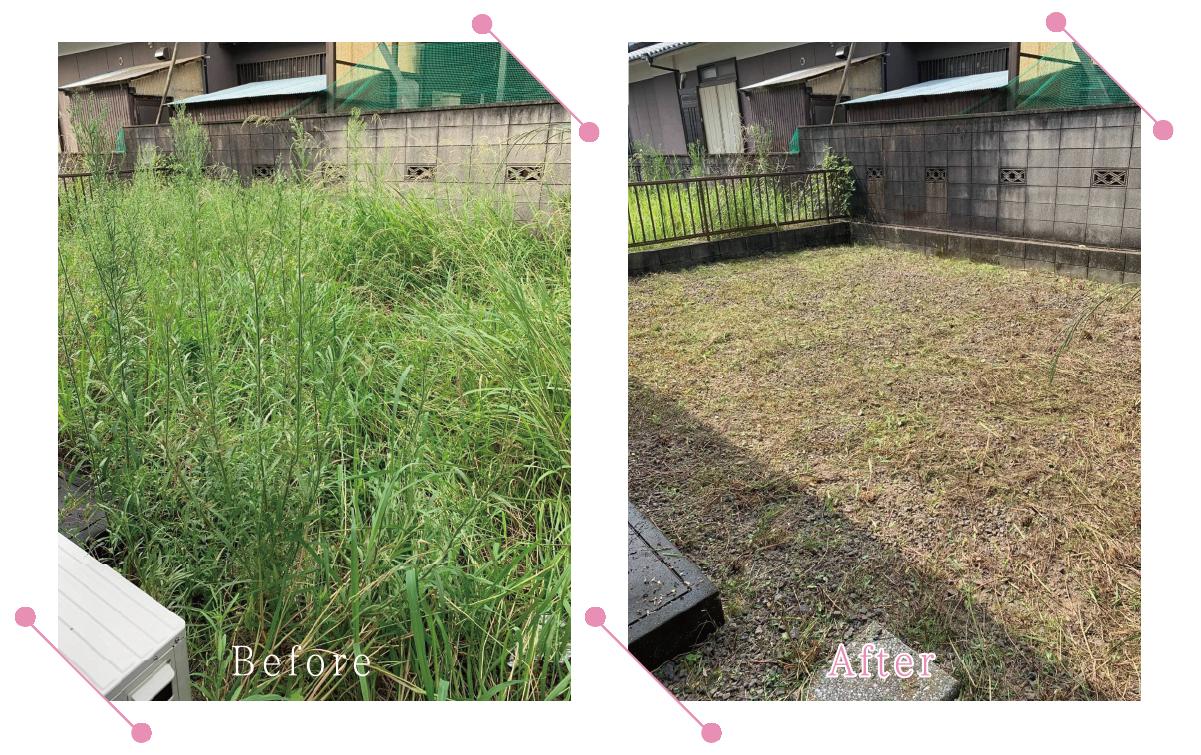 【清掃例】敷地 草刈り1